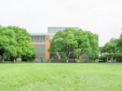 江苏师范大学是985211吗
