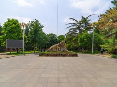 中国人民大学是985吗